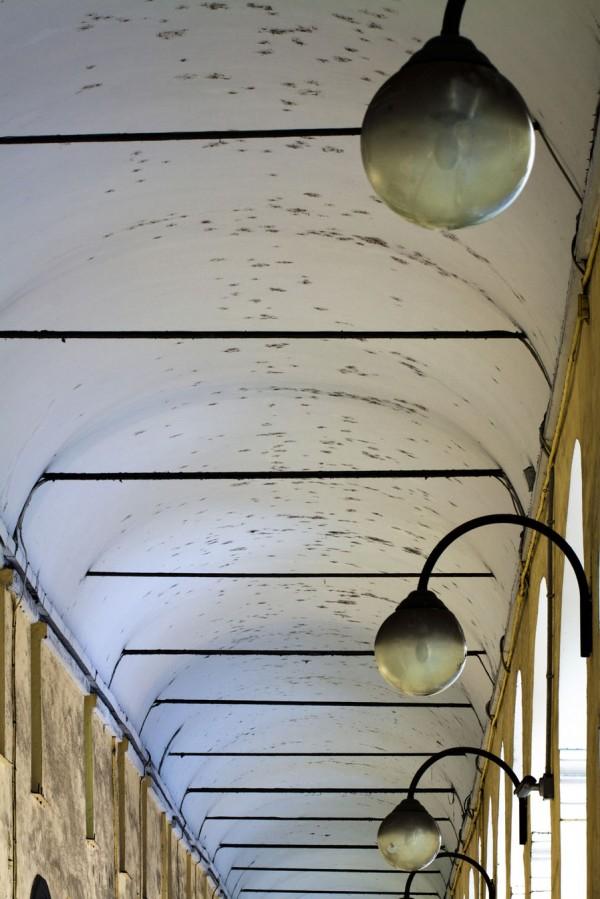 I ragni dei portici di Oneglia - Imperia - soffitto e nidi