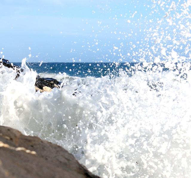 Mousse di mare!