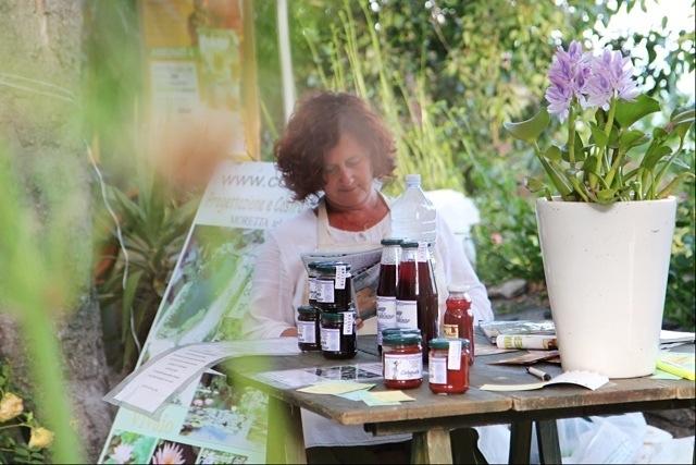 la signora delle piante acquatiche alla Festa delle Erbe di Rollo