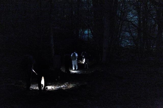 di notte nel bosco di Rezzo