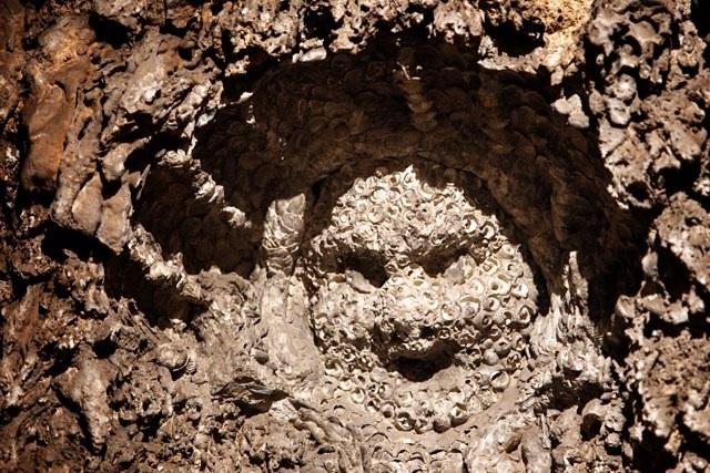 Volto in conchiglie nel ninfeo dei Doria a Dolceacqua, Imperia